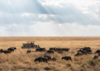 Self-drive vakantie Afrika