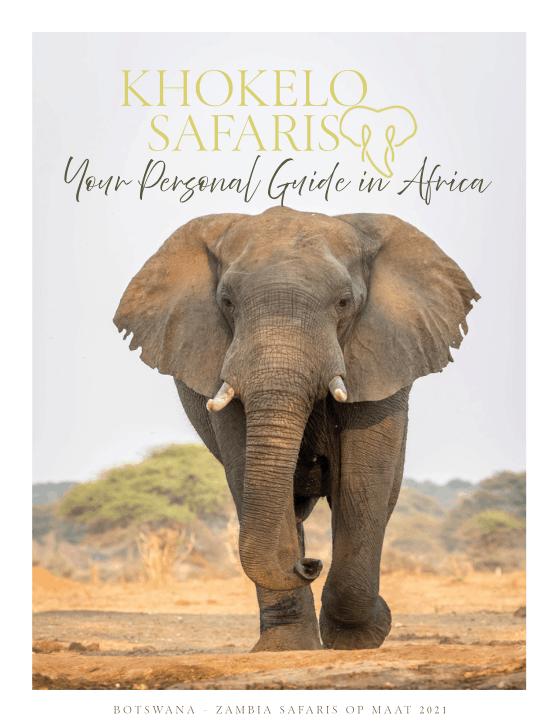 brochure botswana zambia 2021
