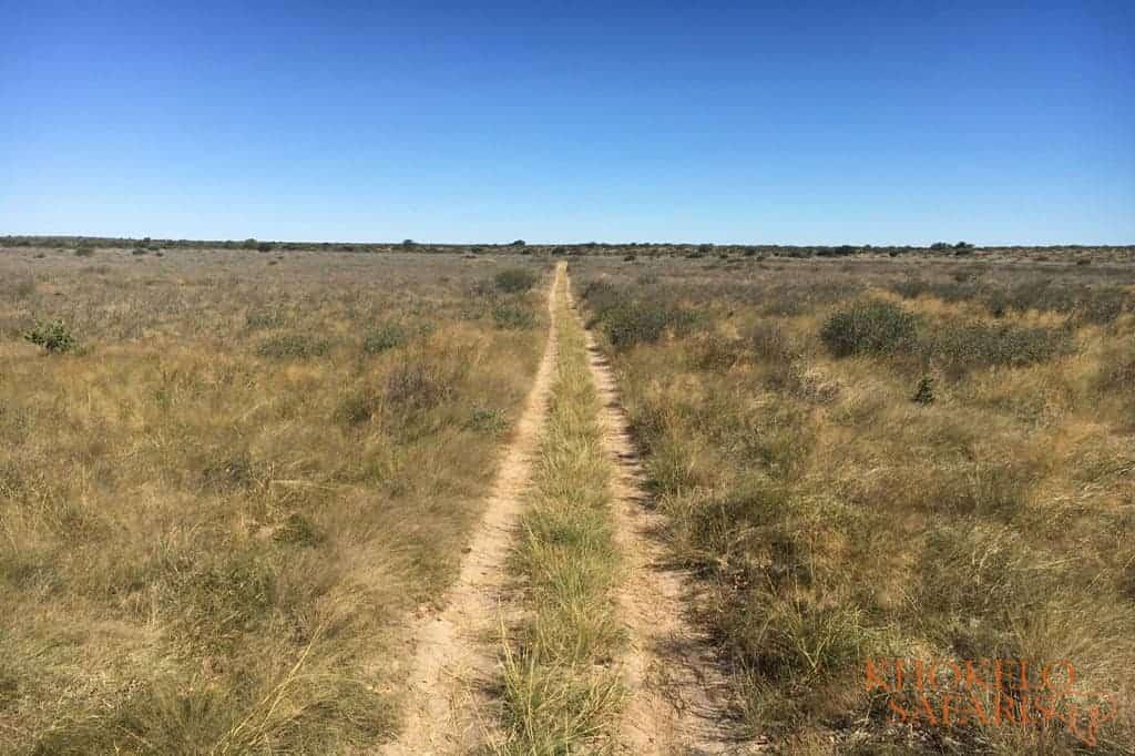 CKGR Selfdrive Botswana